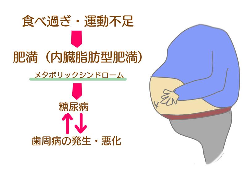 歯周病+メタボ.png