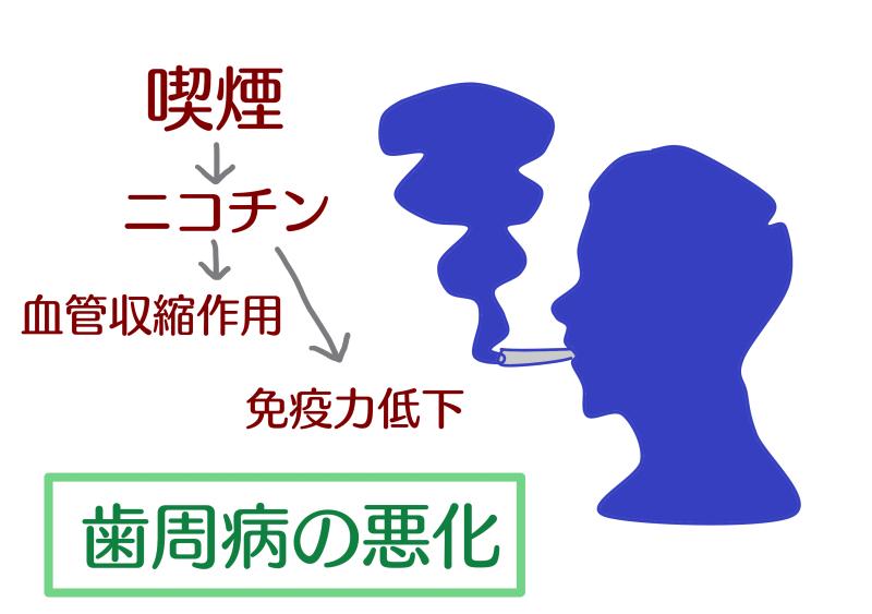 歯周病+タバコ.png