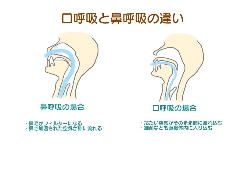 口呼吸と鼻呼吸.png