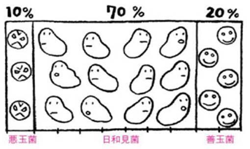 善玉菌 悪玉菌.jpg
